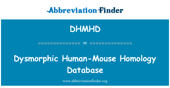 DHMHD: Dysmorphic Human-Mouse Homology Database