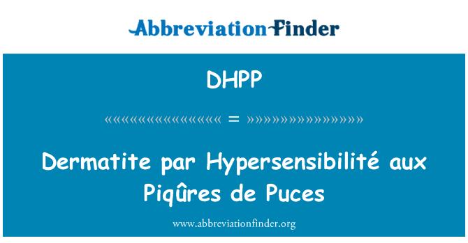 DHPP: Dermatite par Hypersensibilité aux Piqûres de Puces