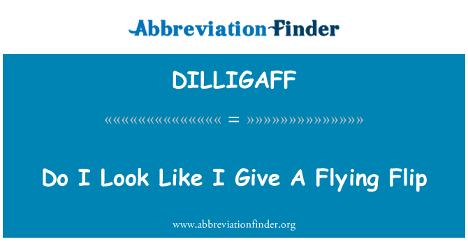 DILLIGAFF: Do I Look Like I Give A Flying Flip