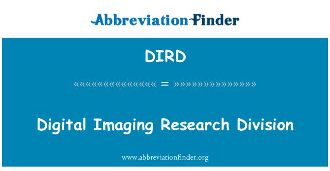 DIRD: Digital Imaging tyrimų skyrius