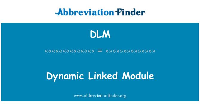 DLM: Dynamic Linked Module