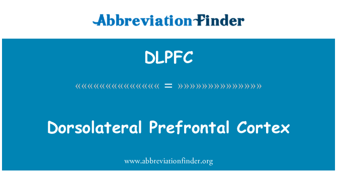 DLPFC: دورسولاٹرال Prefrontal پرانتستا