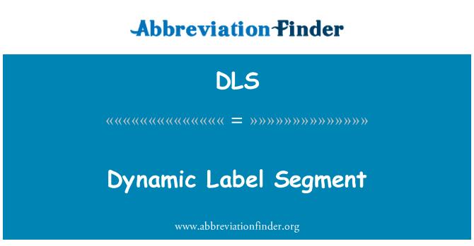 DLS: Dynamic Label Segment