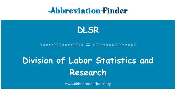 DLSR: Podjela rada statistike i istraživanja