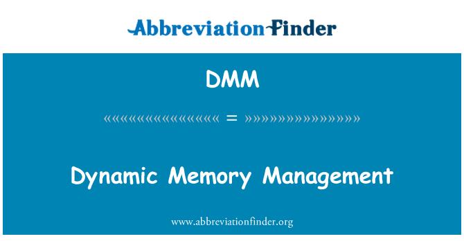 DMM: Dynamic Memory Management