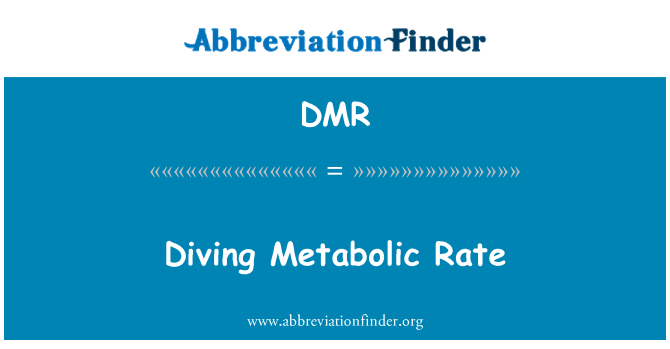 DMR: Diving Metabolic Rate