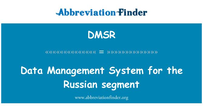 DMSR: Data Management System for the Russian segment