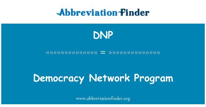 DNP: Democracy Network Program