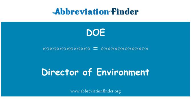 DOE: Director of Environment