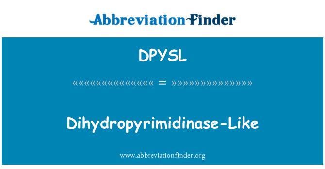 DPYSL: Dihydropyrimidinase-Like