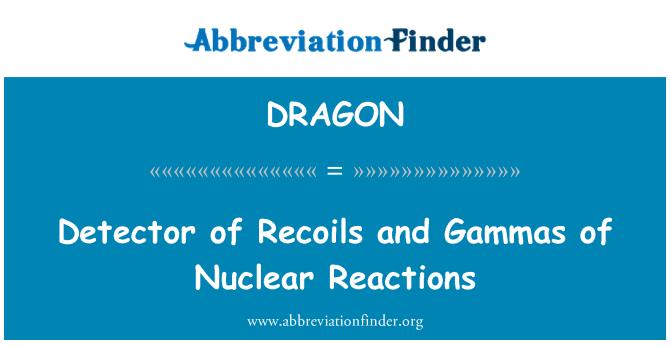 DRAGON: Detektori Recoils ja Gammas Nuclear reaktsioonid