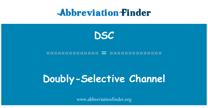 DSC: Doubly-Selective Channel