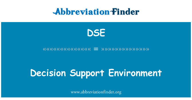 DSE: Decision Support Environment
