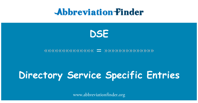 DSE: Directory Service Specific Entries