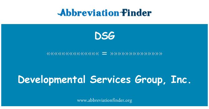 DSG: Developmental Services Group, Inc.