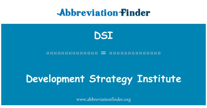 DSI: Development Strategy Institute
