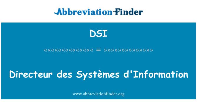 DSI: Directeur des Systèmes d'Information