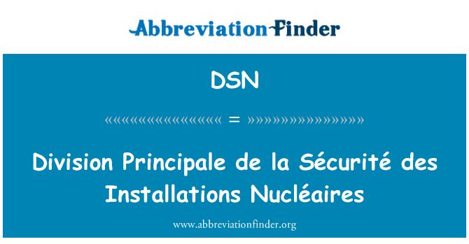 DSN: Division Principale de la Sécurité des Installations Nucléaires