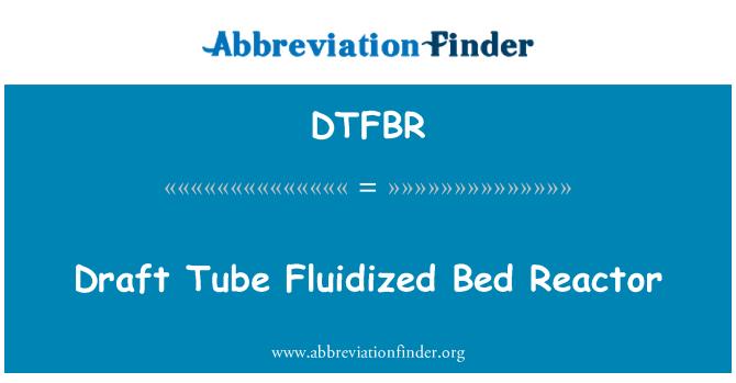 DTFBR: Draft Tube Fluidized Bed Reactor