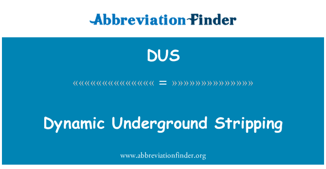 DUS: Dynamic Underground Stripping