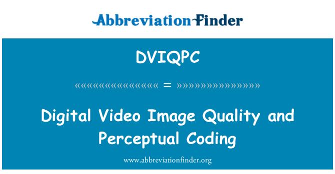 DVIQPC: Digital Video Image Quality and Perceptual Coding