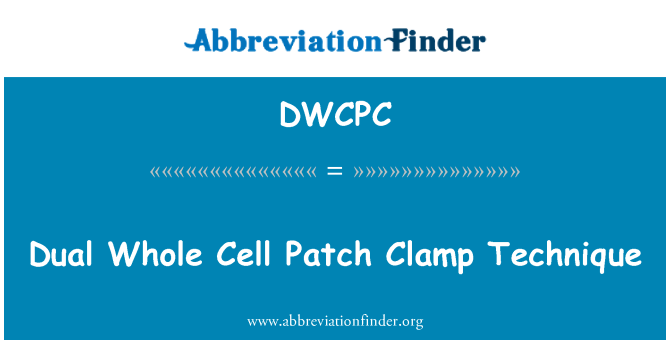 DWCPC: Dual Whole Cell Patch Clamp Technique