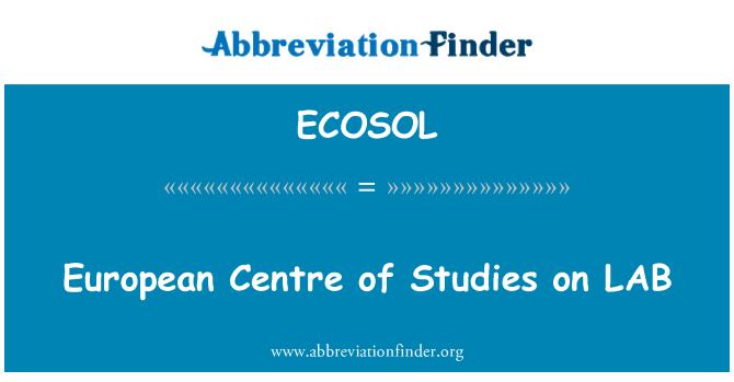 ECOSOL: 欧洲中心的实验室研究