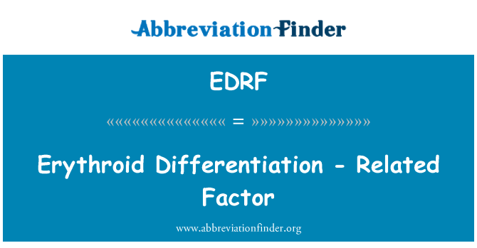 EDRF: Erythroid Differentiation - Related Factor