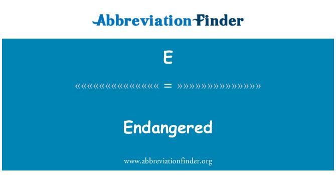 E: En peligro de extinción
