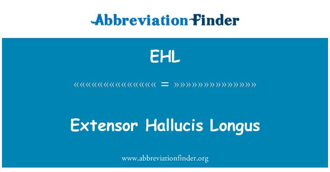 EHL: Extensor Hallucis Longus