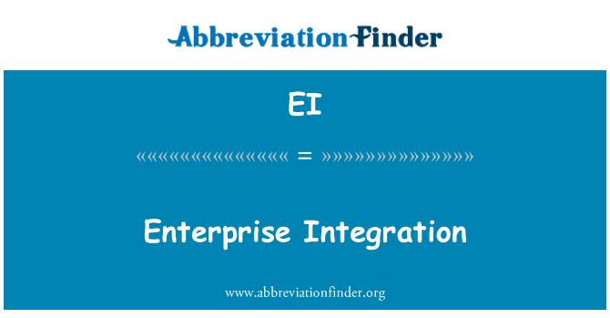 EI: Enterprise Integration