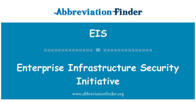 EIS: Enterprise Infrastructure Security Initiative