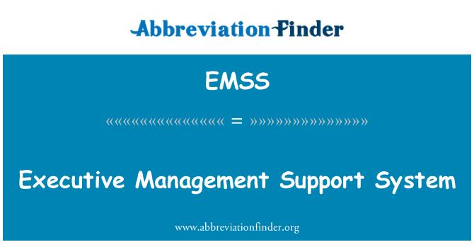 EMSS: Üst yönetim destek sistemi