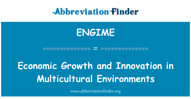 ENGIME: Economic Growth and Innovation in Multicultural Environments