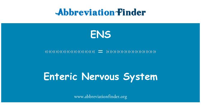 ENS: Enteric Nervous System
