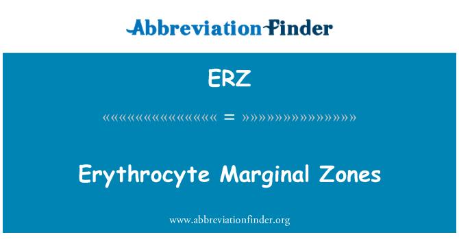 ERZ: Erythrocyte Marginal Zones