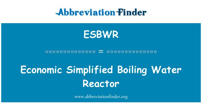 ESBWR: Reactor de agua hirvienda simplificado económico