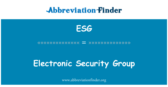 ESG: Electronic Security Group