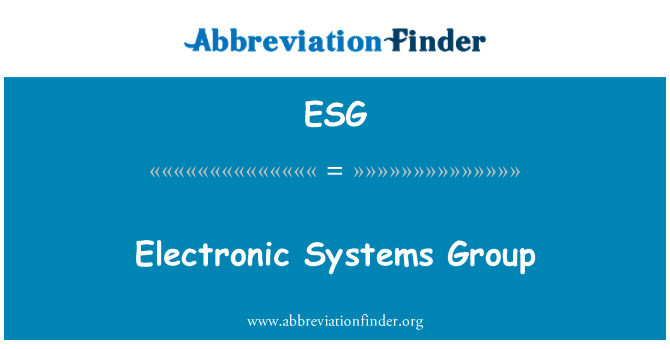 ESG: Electronic Systems Group