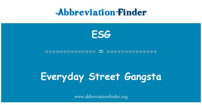 ESG: Everyday Street Gangsta