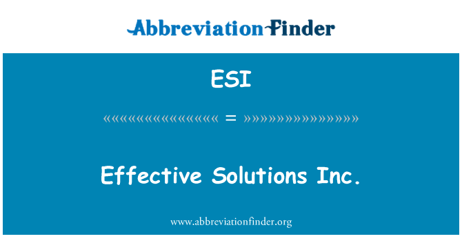 ESI: Effective Solutions Inc.