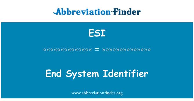 ESI: End System Identifier
