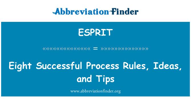 ESPRIT: Ocho reglas de proceso exitoso, Ideas y consejos