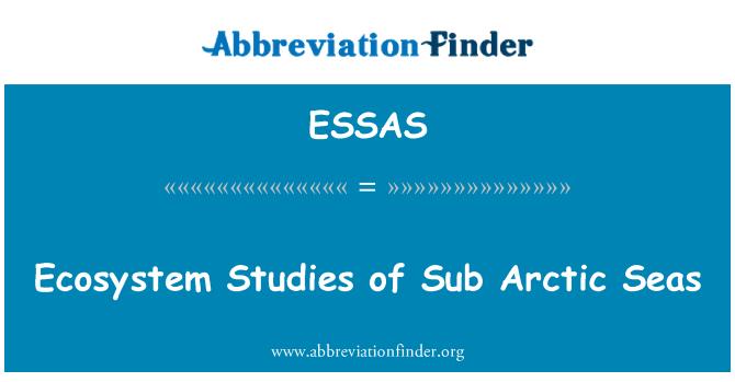 ESSAS: Ekosystémové studie Sub polárního moře
