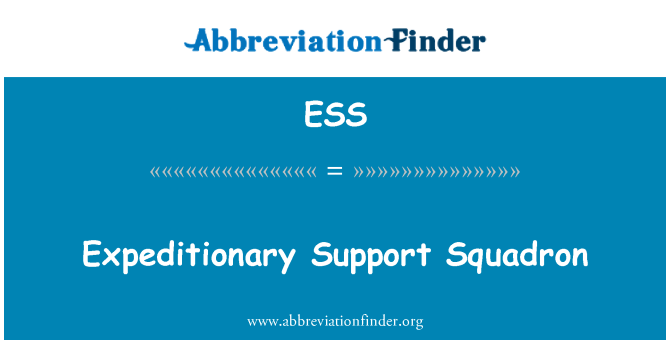ESS: Expeditionary Support Squadron
