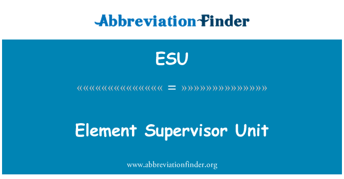 ESU: Element Supervisor Unit