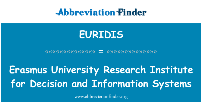 EURIDIS: Erasmus University Research Institute for Decision and Information Systems