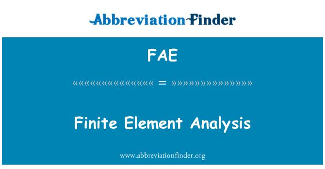 FAE: Finite Element Analysis