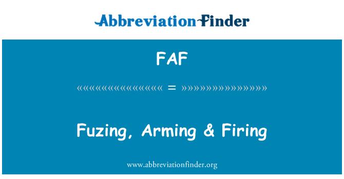 FAF: Fuzing, Arming & Firing