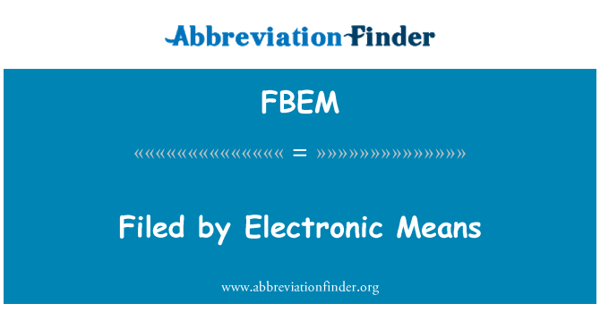 FBEM: 提交的电子手段
